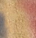 Złota aleja - Color-Mix